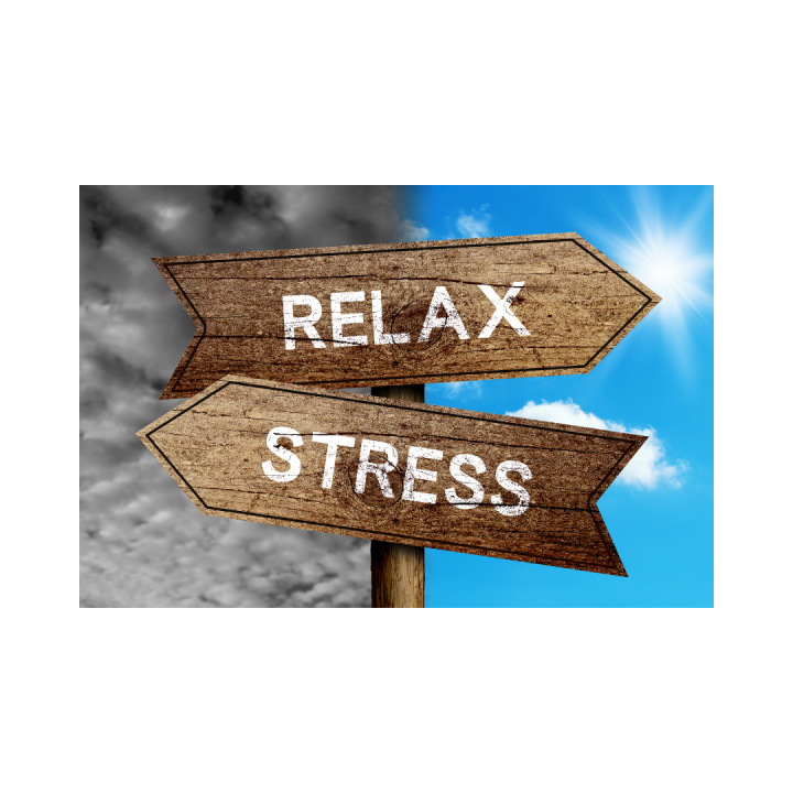 El enemigo silencioso :Stress